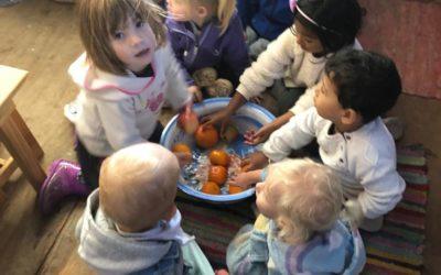 Toddler Fruit