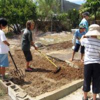creating-a-veggie-garden